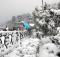 Shimla-Tours