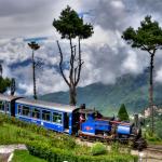 Darjeeling3