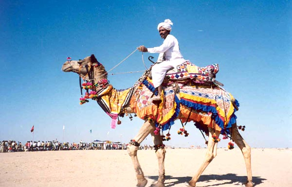 How to travel in Rajasthan?