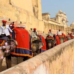 Best India Travel Package to See India