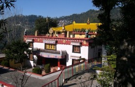 Dip Tse-Chok Ling Gompa, McLeodganj