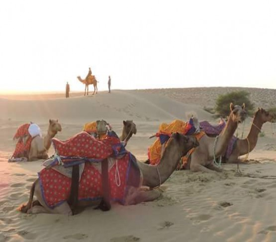 Rajasthan Pictures