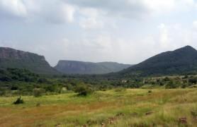 Kachida Valley Ranthambore