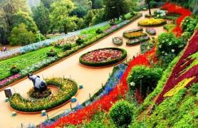 Rose Garden Chandigarh