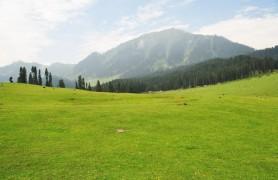 Yusmarg, Jammu and Kashmir, India