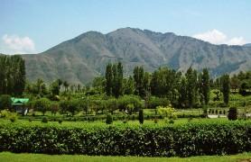 Kokernag, Jammu And Kashmir, India