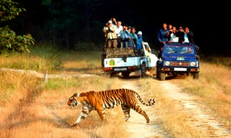3 Days Corbett Package From Delhi