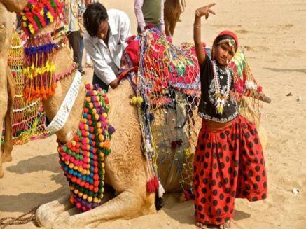 Rajasthan Pushkar Fair Tour Package