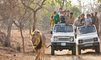 Wildlife Nainital Jim Corbett Tour Package