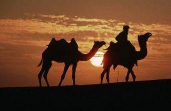 Visit 18 Days Rajasthan Popular Places With Taj Mahal Agra
