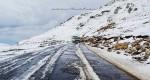 Private Cold Desert Himachal Tour