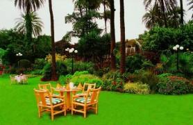 Palm View Garden Mount Abu