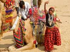 Pushkar Fair WIth Tiger and Taj Mahal Tour