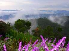 Amazing Kumaun Uttrakhand Tour Package